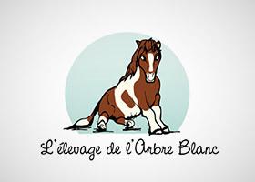 L Alliance Francaise Galway Création du logo et déclinaisons de la charte sur tee-shirt et ...